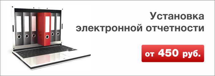 Установка электронной отчётности
